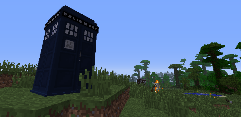 This screenshot shows the famous 'Tardis' which does have its own use. You can open it with the 'Tardis Key', and then use your Sonic Screwdriver to teleport you to 'The End'.